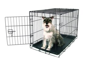 Carlson Secure and Compact Single Door Metal Dog Crate